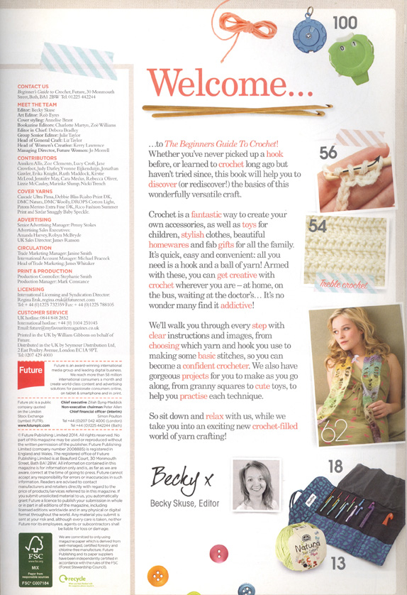 Beginners Guide to Crochet page 3