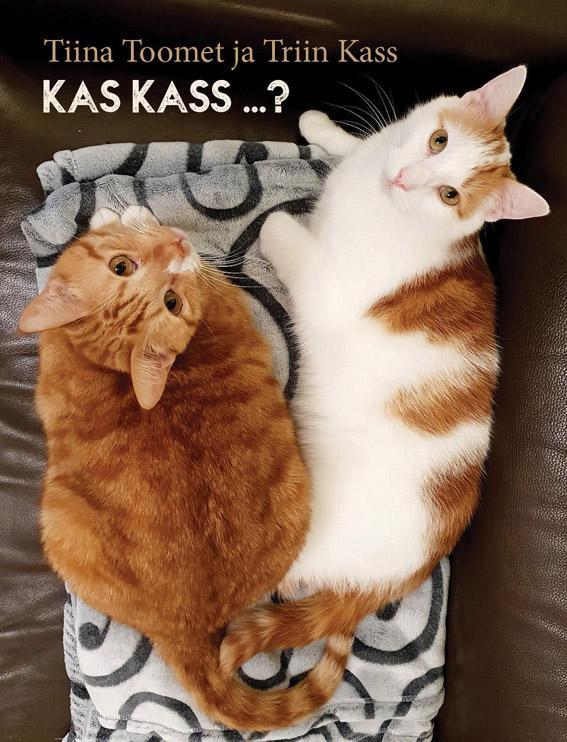 Kas kass ...?