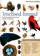 Imelised linnud