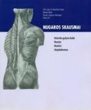 Nugaros skausmai: natūralūs gydymo būdai, masažas, mankšta, atsipalaidavimas