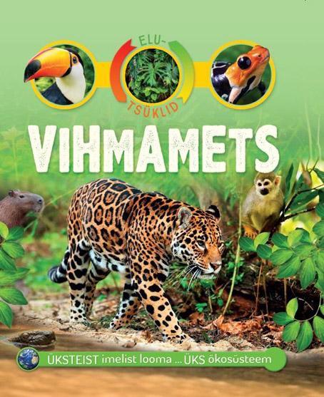 Vihmamets